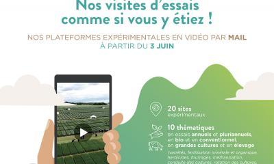 Visites d'essais virtuelles - Fontenois les Montbozon