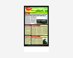 Newsletter 06 - Juillet 2011